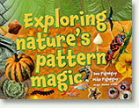 Exploring Nature's Pattern Magic